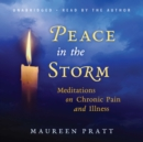 Peace in the Storm - eAudiobook