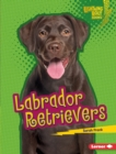Labrador Retrievers - eBook