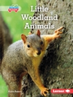 Little Woodland Animals - eBook