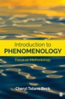 Introduction to Phenomenology : Focus on Methodology - eBook