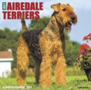 Just Airedale Terriers 2020 Wall Calendar (Dog Breed Calendar) - Book