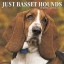 Just Basset Hounds 2020 Wall Calendar (Dog Breed Calendar) - Book