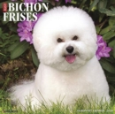 Just Bichons Frises 2020 Wall Calendar (Dog Breed Calendar) - Book