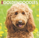 Just Goldendoodles 2020 Wall Calendar (Dog Breed Calendar) - Book