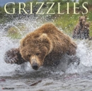 Grizzlies 2020 Wall Calendar - Book