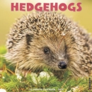 Hedgehogs 2020 Wall Calendar - Book
