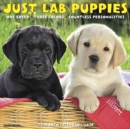 Just Lab Puppies 2020 Wall Calendar (Dog Breed Calendar) - Book