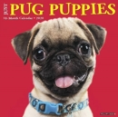 Just Pug Puppies 2020 Wall Calendar (Dog Breed Calendar) - Book