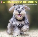 Just Schnauzer Puppies 2020 Wall Calendar (Dog Breed Calendar) - Book