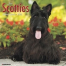 Just Scotties 2020 Wall Calendar (Dog Breed Calendar) - Book