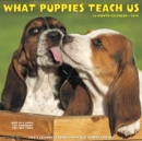What Puppies Teach Us 2020 Wall Calendar - Book