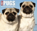 Just Pugs 2020 Box Calendar (Dog Breed Calendar) - Book