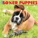 Just Boxer Puppies 2021 Wall Calendar (Dog Breed Calendar) - Book