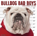Bulldog Bad Boys 2021 Wall Calendar (Dog Breed Calendar) - Book