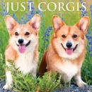 Just Corgis 2021 Wall Calendar (Dog Breed Calendar) - Book