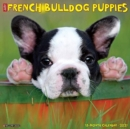 Just French Bulldog Puppies 2021 Wall Calendar (Dog Breed Calendar) - Book