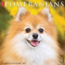 Just Pomeranians 2021 Wall Calendar (Dog Breed Calendar) - Book