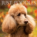 Just Poodles 2021 Wall Calendar (Dog Breed Calendar) - Book