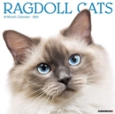 Ragdoll Cats 2021 Wall Calendar - Book