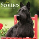 Just Scotties 2021 Wall Calendar (Dog Breed Calendar) - Book