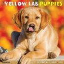 Just Yellow Lab Puppies 2021 Wall Calendar (Dog Breed Calendar) - Book