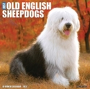 Just Old English Sheepdogs 2021 Wall Calendar (Dog Breed Calendar) - Book
