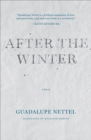After the Winter - eBook