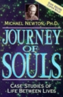 Journey of Souls : Case Studies of Life Between Lives - Book