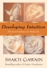 Developing Intuition : Practical Guidance for Daily Life - eBook