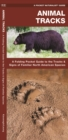 Animal Tracks : A Folding Pocket Guide to the Tracks & Signs of Familiar North American Species - Book