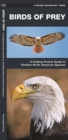 Birds of Prey : A Folding Pocket Guide to Familiar North American Species - Book