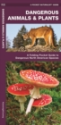 Dangerous Animals & Plants : A Folding Pocket Guide to Dangerous North American Species - Book