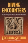 Divine Encounters : A Guide to Visions, Angels, and Other Emissaries - eBook