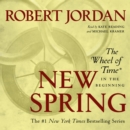 New Spring : The Novel - eAudiobook