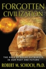 Forgotten Civilization : The Role of Solar Outbursts in Our Past and Future - eBook