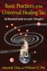 Basic Practices of the Universal Healing Tao : An Illustrated Guide to Levels 1 through 6 - eBook