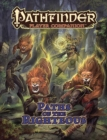 Pathfinder Player Companion: Paths of the Righteous - Book