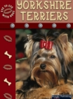 Yorkshire Terriers - eBook