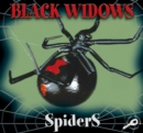 Black Widows - eBook