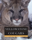 Yellowstone Cougars : Ecology before and during Wolf Restoration - eBook