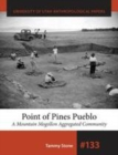 Point of Pines Pueblo : A Mountain Mogollon Aggregated Community - eBook