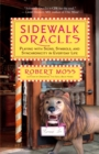 Sidewalk Oracles : Playing with Signs, Symbols, and Synchronicity in Everyday Life - eBook