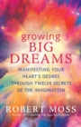 Growing Big Dreams : Manifesting Your Heart's Desires Through Twelve Secrets of the Imagination - Book