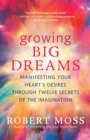 Growing Big Dreams : Manifesting Your Heart's Desires through Twelve Secrets of the Imagination - eBook