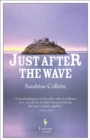 Just After the Wave - eBook