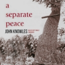 A Separate Peace - eAudiobook