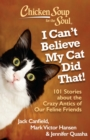 Chicken Soup for the Soul: I Can't Believe My Cat Did That! : 101 Stories about the Crazy Antics of Our Feline Friends - eBook