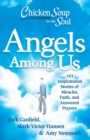 Chicken Soup for the Soul: Angels Among Us : 101 Inspirational Stories of Miracles, Faith, and Answered Prayers - eBook