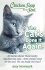 Chicken Soup for the Soul: The Cat's Done It Again! : 20 Stories About Those Goofy, Mischievous Cats - from Chicken Soup for the Soul: The Cat Really Did That? - eBook