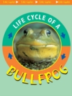 Life Cycle of A Bullfrog - eBook